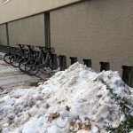 Hubway Bikes at MIT